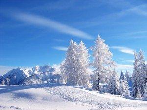 L'hiver dans Poesie foret-sous-la-neige-300x225